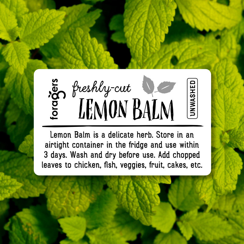 Lemon Balm (freshly cut)