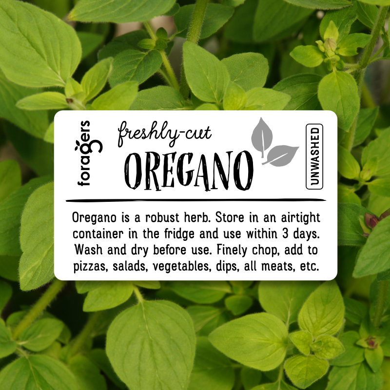 Oregano (freshly cut)